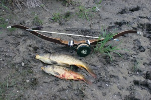 My First bowfishing setup...Bear Grizzly recurve and vintage Bear Archery reel and arrow